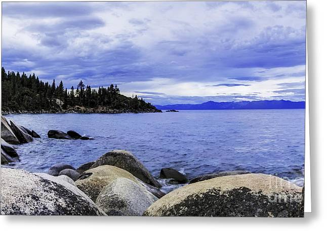 Overcast Day Greeting Cards - Windy Day At Tahoe Greeting Card by Nancy Marie Ricketts