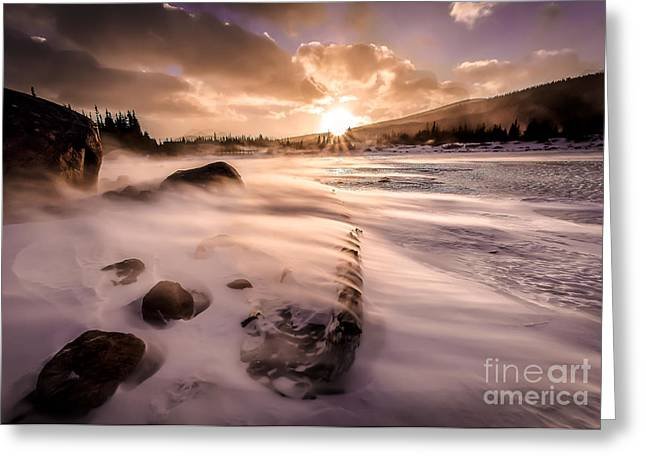 Winter Storm Greeting Cards - Windy Morning Greeting Card by Steven Reed