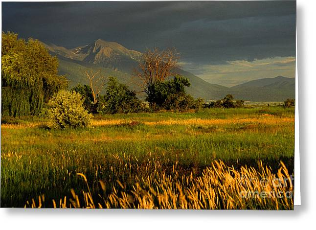 Summer Squall Greeting Cards - Windy Sunset Greeting Card by Rita Boehm