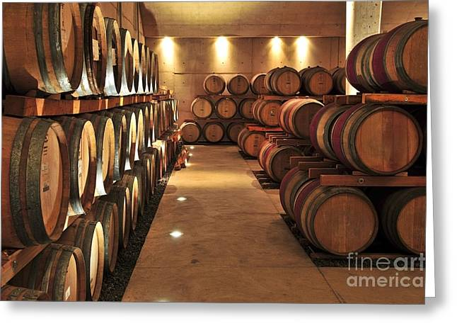 Vineyard Photographs Greeting Cards - Wine barrels Greeting Card by Elena Elisseeva