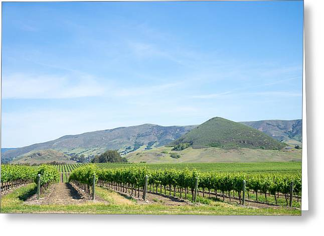 Priya Ghose Greeting Cards - Wine Country Edna Valley Greeting Card by Priya Ghose