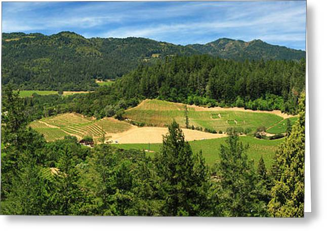 Grape Vineyard Greeting Cards - Wine Country Panorama Greeting Card by James Eddy