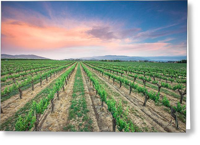 Hanging Wine Glasses Greeting Cards - Wine Country Greeting Card by Robert  Aycock