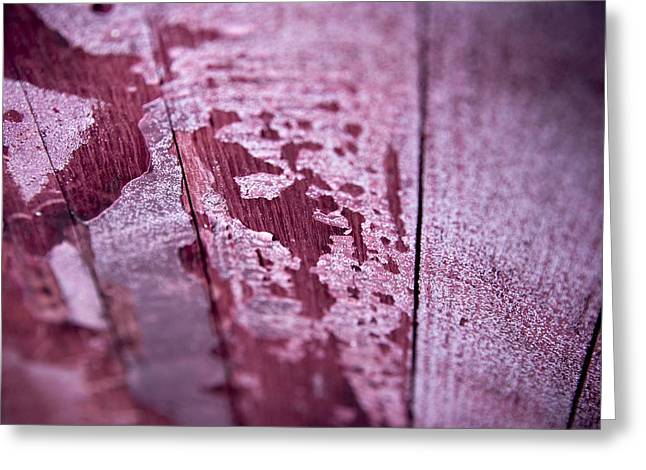 Wine Red Greeting Card by Frank Tschakert