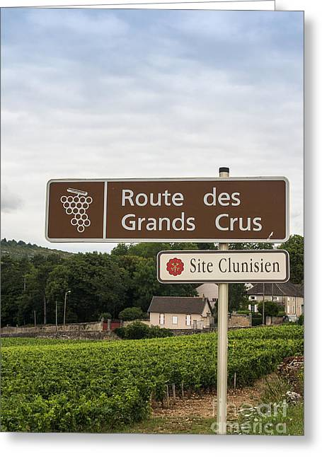 Grand Cru Greeting Cards - Wine route sign in France Greeting Card by Patricia Hofmeester