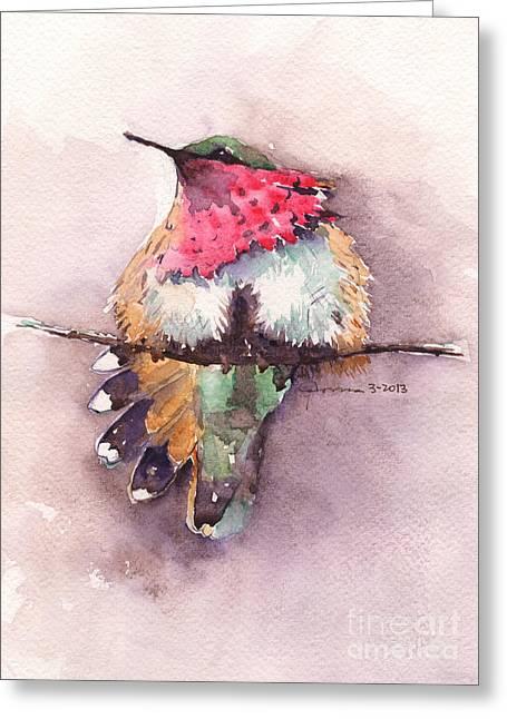 Hafner Greeting Cards - Wine-throated Hummingbird Greeting Card by Claudia Hafner