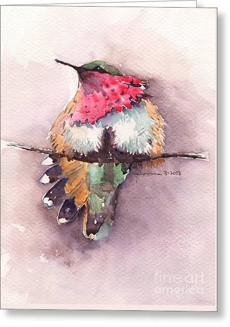 Wine-throated Hummingbird Greeting Card by Claudia Hafner