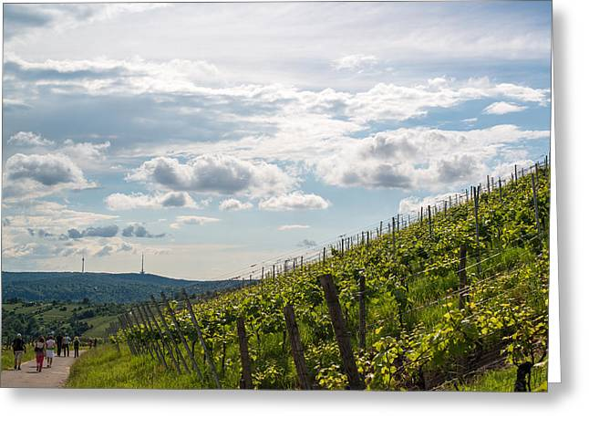 Wine Tour Greeting Cards - Wine Tour in Uhlbach near Stuttgart - Germany Greeting Card by Frank Gaertner