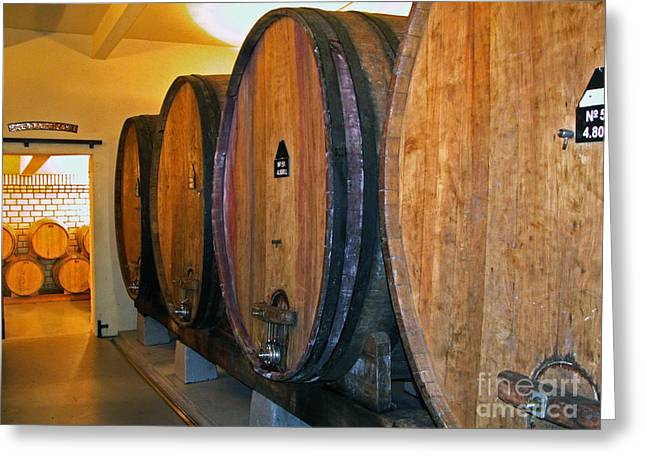 Cooperage Greeting Cards - Wine Vats Greeting Card by Tim Holt