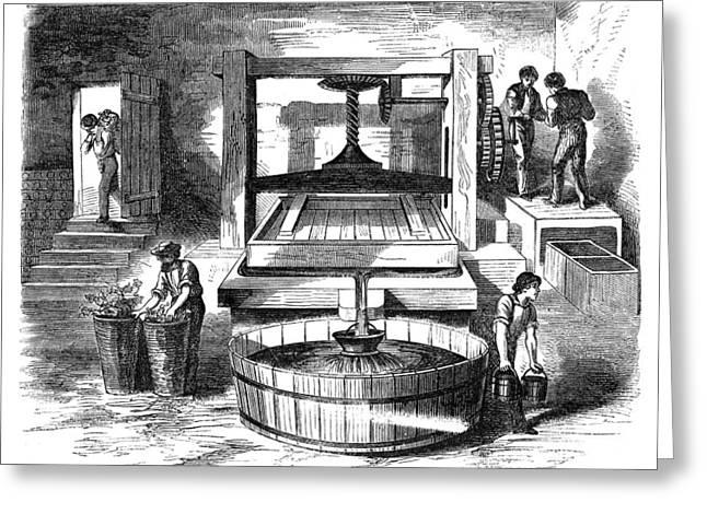 Winemaking Press, 1866 Greeting Card by Granger