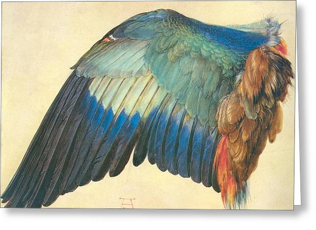 Albrecht Greeting Cards - Wing of a Blue Roller 1512 Greeting Card by Philip Ralley