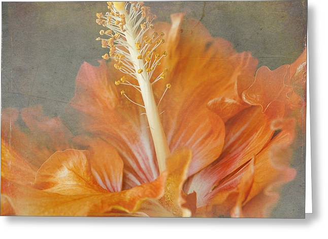 Tropical Flowers Of Hawaii Greeting Cards - Winged Surprises Greeting Card by Sharon Mau