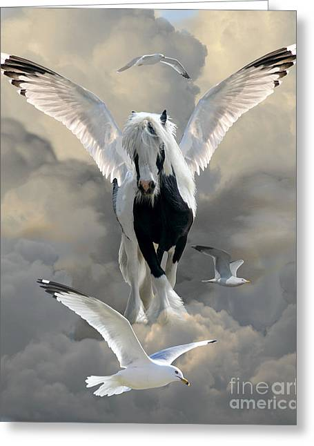Gypsy Cob Greeting Cards - Wings and Feathers Greeting Card by Judy Wood