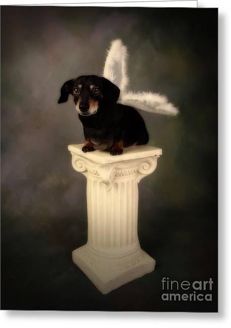 Puppy Love Metal Prints Greeting Cards - Wings Greeting Card by Denise Oldridge