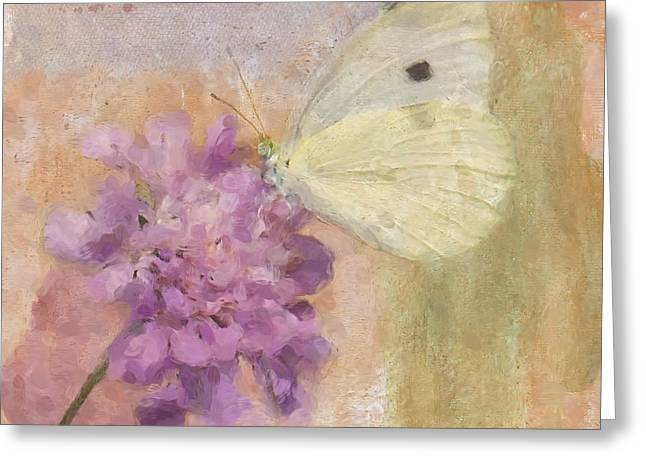 Cabbage White Butterfly Greeting Cards - Wings of Beauty Greeting Card by Betty LaRue
