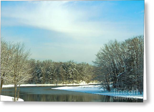 Reflections In River Greeting Cards - Winnipesaukee River Greeting Card by Mim White