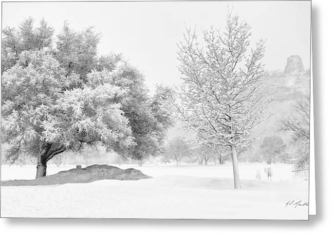 Snow-coated Greeting Cards - Winona Snowstorm Greeting Card by Al  Mueller