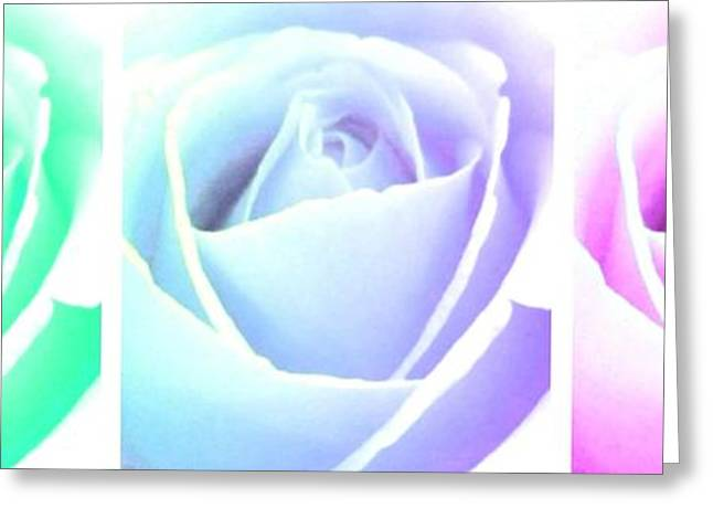 Floral Digital Art Greeting Cards - Winsome Roses Trio Greeting Card by Will Borden