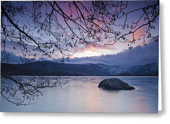 Castilla Greeting Cards - Winter afternoon in Sanabria Lake Greeting Card by Ruben Vicente