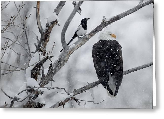 Winter Allies Greeting Card by Sandy Sisti