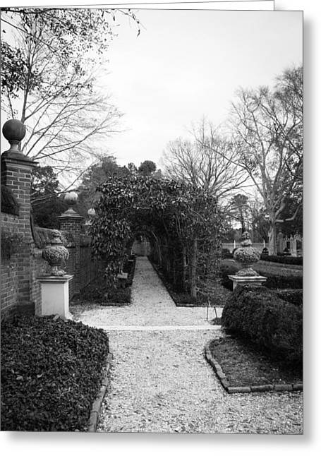 Garden Statuary Greeting Cards - Winter Arbor at the Governors Palace Greeting Card by Teresa Mucha