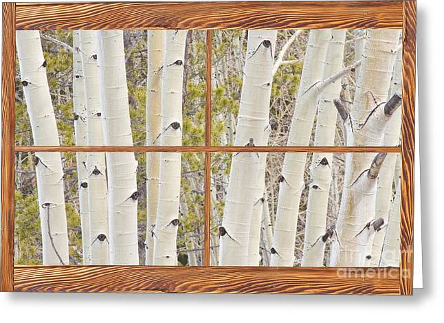 Room With A View Greeting Cards - Winter Aspen Tree Forest Barn Wood Picture Window Frame View Greeting Card by James BO  Insogna