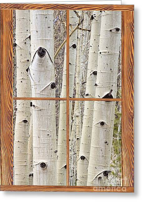 Room With A View Greeting Cards - Winter Aspen Tree View Through a Barn Wood Picture Window Frame Greeting Card by James BO  Insogna