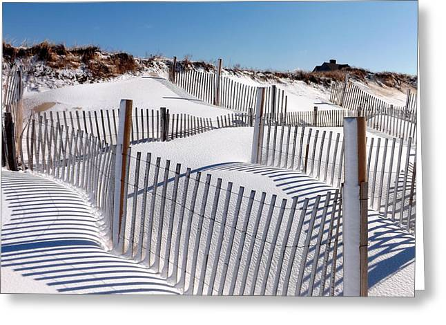Cold Storage Beach Greeting Cards - Winter at Cold Storage Beach Greeting Card by Dianne Cowen