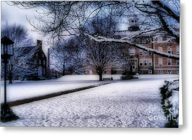 Winter At College Greeting Card by Skip Willits