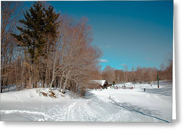 Chairlift Greeting Cards - Winter at McCauley Mountain III Greeting Card by David Patterson