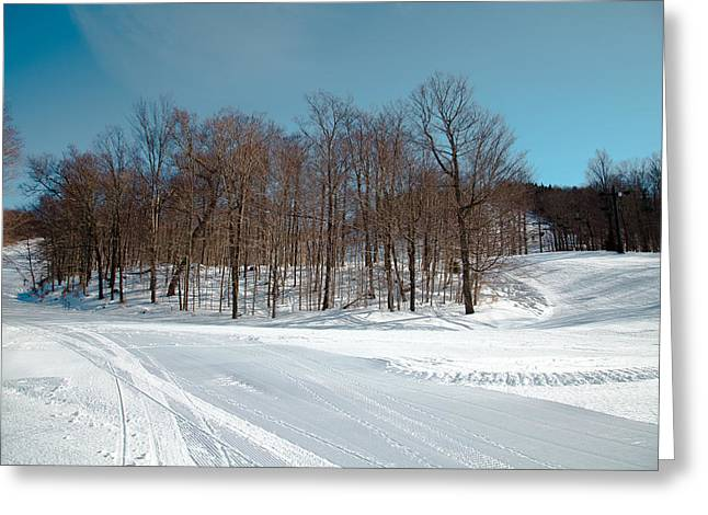 Chairlift Greeting Cards - Winter at McCauley Mountain V Greeting Card by David Patterson