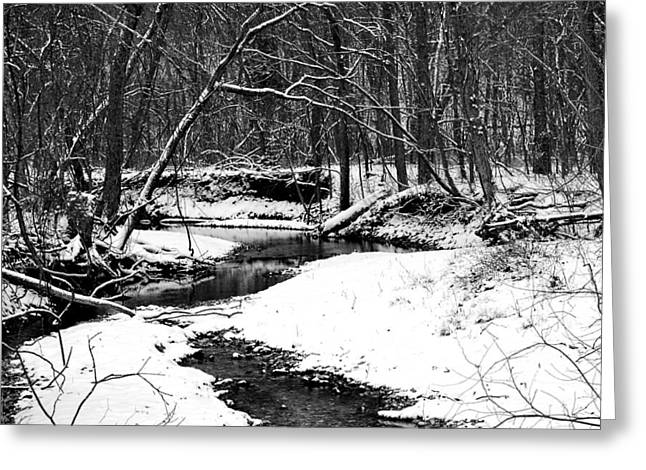 Peaceful Scene Greeting Cards - Winter At Pedelo Black And White Greeting Card by Deena Stoddard