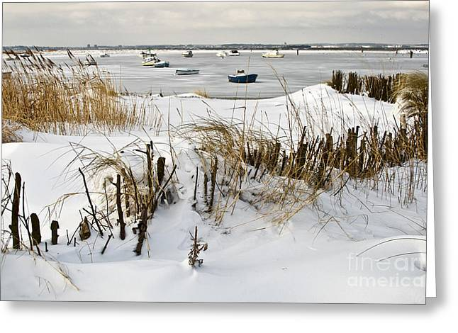 Peaceful Scenery Greeting Cards - Winter at the Beach 2 Greeting Card by Heiko Koehrer-Wagner
