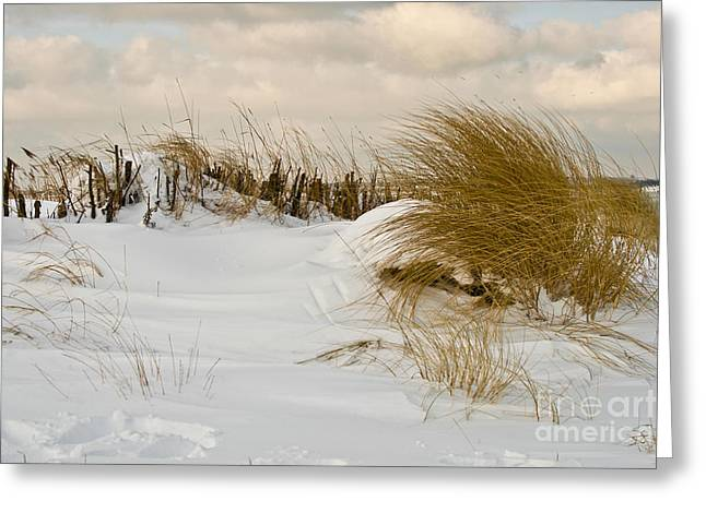 Heiko Greeting Cards - Winter at the Beach 3 Greeting Card by Heiko Koehrer-Wagner