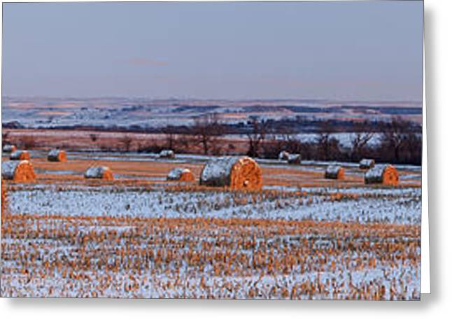 Haybale Greeting Cards - Winter Bales Greeting Card by Scott Bean