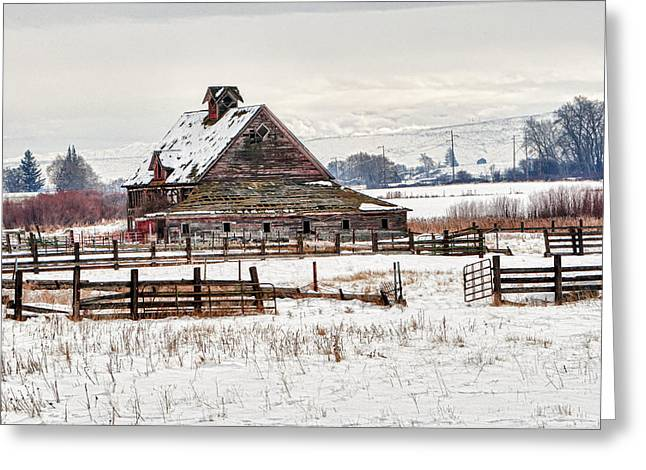 Snow Covered Ground Greeting Cards - Winter Barn Greeting Card by Mary Jo Allen