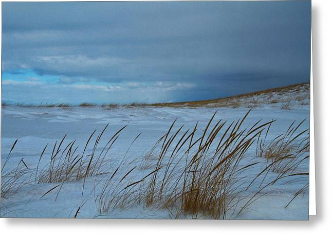 Saint Joseph Greeting Cards - Winter Beach Greeting Card by Dan Sproul