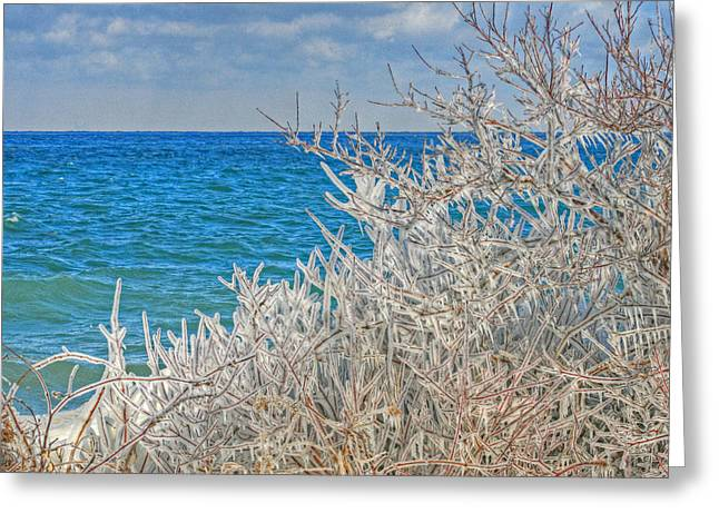 Winter Beach Greeting Card by Michael Allen