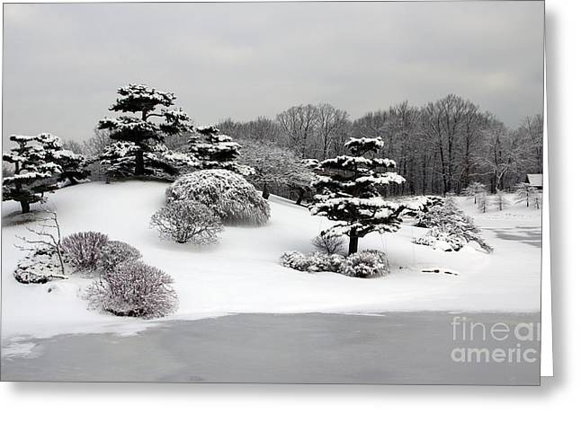 Chevalier Greeting Cards - Winter Beauty Greeting Card by Elizabeth Chevalier