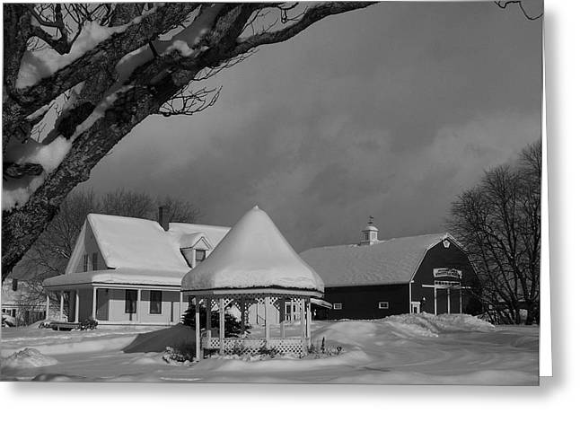 Maine Farmhouse Greeting Cards - Winter Beauty Greeting Card by Gene Cyr