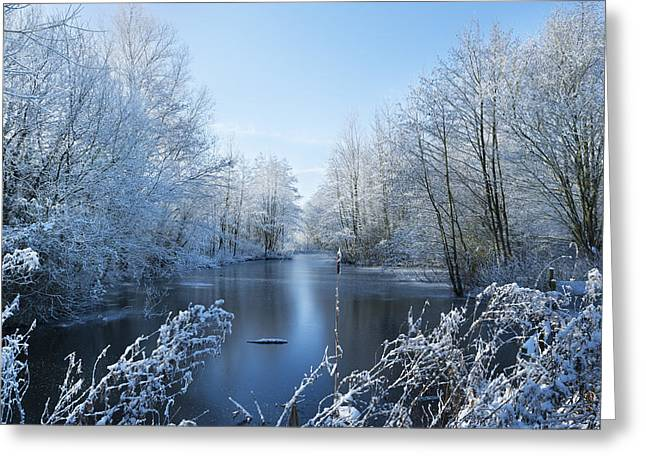 Snowy Stream Greeting Cards - Winter Beauty Greeting Card by Svetlana Sewell