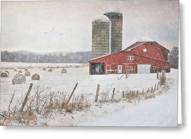 Winter Begins Greeting Card by Lori Deiter