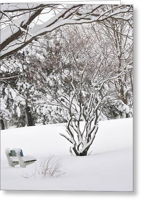 Frederico Borges Greeting Cards - Winter bench Greeting Card by Frederico Borges