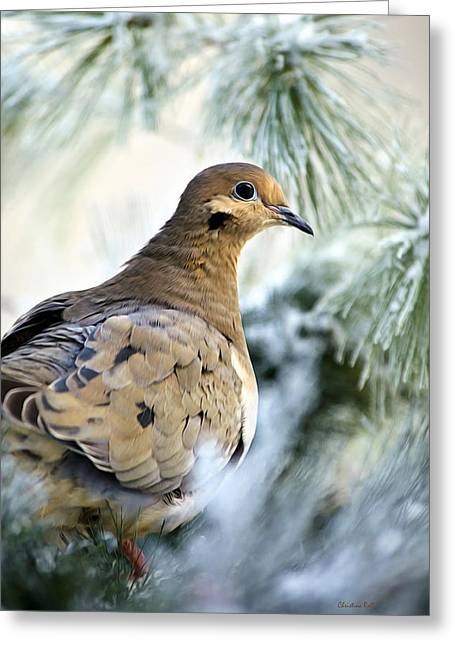 Christina Digital Art Greeting Cards - Winter Bird Mourning Dove Greeting Card by Christina Rollo