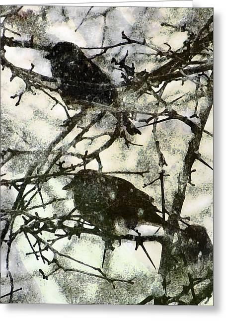 Winter Birds Greeting Card by John Goyer