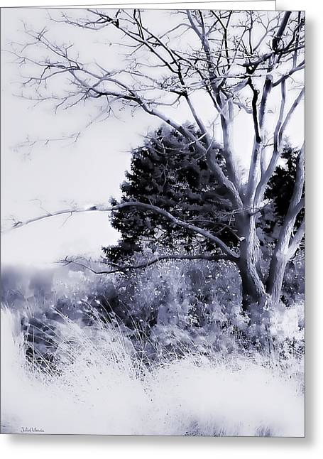 Snow Scene Digital Greeting Cards - Winter Blue  Greeting Card by Julie Palencia