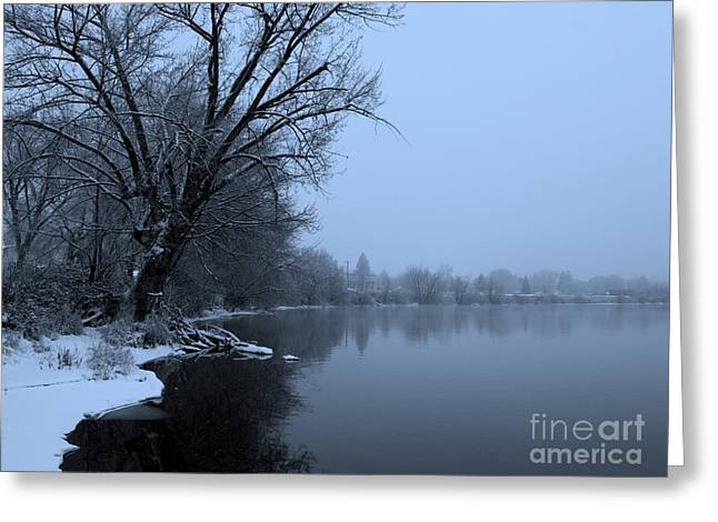 Silhouette Of Tree Greeting Cards - Winter Blues Greeting Card by Carol Groenen