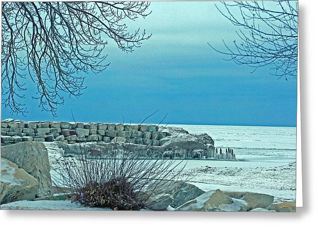 Solstice Greeting Cards Greeting Cards - Winter Blues Greeting Card by Kay Novy