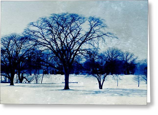 Winter Blues Greeting Card by Shawna  Rowe