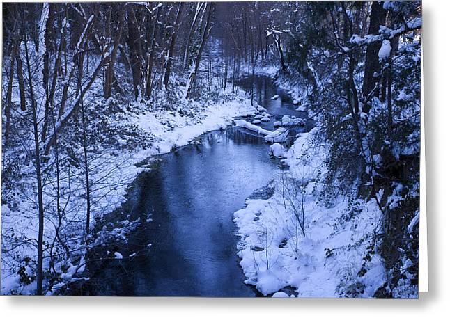 West Fork Greeting Cards - Winter Blues Greeting Card by Sue Cullumber